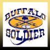 Buffalo T-Shirt Design