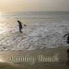 Lumley Beach Post Card (Sierra Leone)